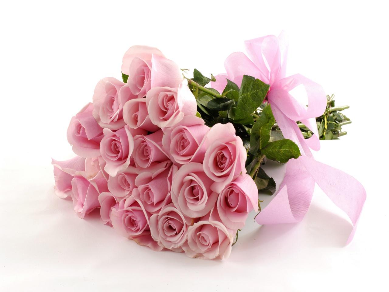 http://www.florist.kg/uploads/03-03-14/238861-svetik.jpg